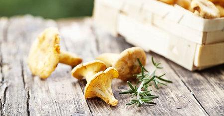 #Slowlife: Ensalada de hongos para una piel sana